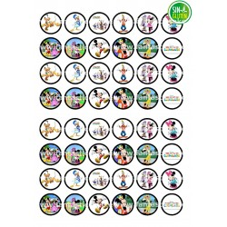 Oblea Angry Birds Nº 9