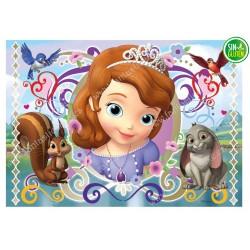 Impresión para tarta Princesa Sofía Nº 257