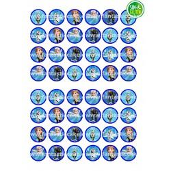 Oblea Angry Birds de 13 cms Nº 8